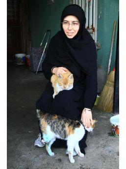 Yaşama Döndürülen Kedileri Sahiplendi