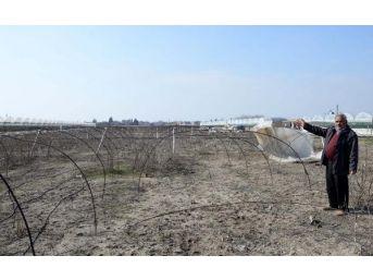 Çiftçi Kredisini Ödeyemedi, Tarlası Icradan Satışa Çıktı