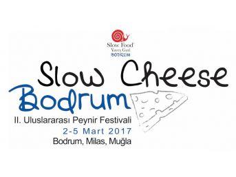Iı. Slow Cheese Peynir Festivali Anadolu Peynir Hazinesine Işık Tutacak