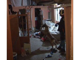 Ankara Emniyetinden Zehir Tacirlerine Ağır Darbe