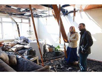 Evleri Yandı, Sadece Saksıdaki Çiçekler Alevlerden Etkilenmedi