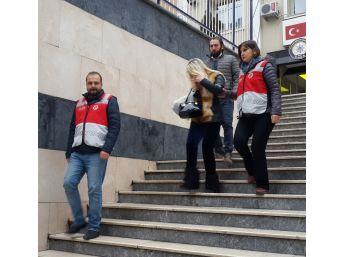 İstanbul Ve Kocaeli'de Geniş Çaplı Fuhuş Operasyonu