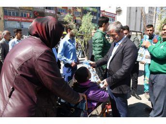 Başkan Mehmet Tahmazoğlu Fidan Dağıttı