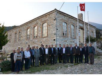 Aydın'da Çiftçinin En Büyük Derdi Domuzlar