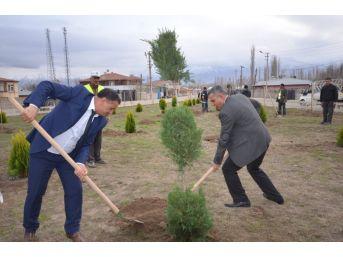 Iğdır'da Ağaç Dikme Mevsimi Başladı