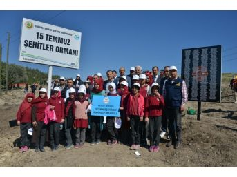Erdemli'de 15 Temmuz Şehitleri Anısına Hatıra Ormanı