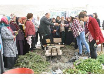 Tarım İlçe Müdürlüğünden Devrekli Çiftçilere Teknik Gezi