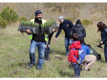 Çeküd Ve Atikder Öncülüğünde 10 Bin Fidan Dikildi