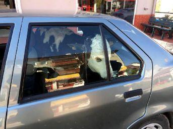 Buzağıyı Otomobilin Arka Koltuğunda Veterinere Götürdü