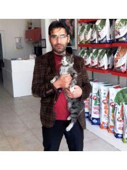 Zehirlenen Kediyi Fabrika İşçisi Kurtardı
