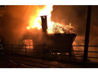 Ordu'Da Korkutan Yangında 5 Bina Zarar Gördü...