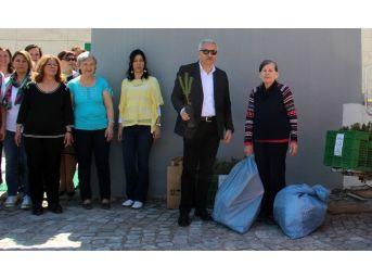 Çankaya'da Atıklar Fidana Dönüşüyor