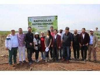 Beykoz Belediyesi Düzenlendi, Radyocular Fidan Dikti