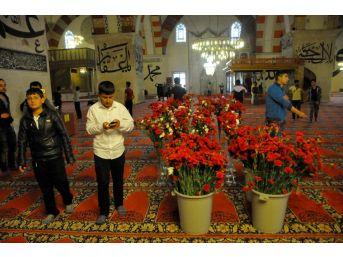 6 Asırlık Gelenek Edirne'de Yaşatılıyor
