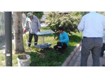 Alaşehir Belediyesi Sokak Hayvanlarını Unutmadı
