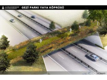 Gezi Parkı'Na Yapılacak Ekolojik Yaya Köprüsü Böyle Görünecek
