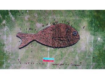 2 Bin 791 Çocukla Balık Figürlü Rekor Denemesi