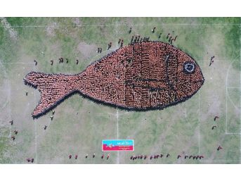 2791 Kişiyle Dünyanın En Büyük Balık Figürü Oluşturuldu