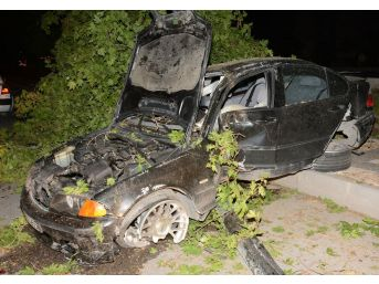 Refüje Çıkan Otomobil Ağaçlara Çarparak Durabildi