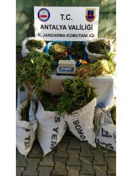Alanya'da Uyuşturucu Tacirlerine Büyük Darbe
