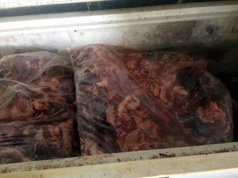 Aydın'da 5 Ton Kaçak Domuz Eti Yakalandı