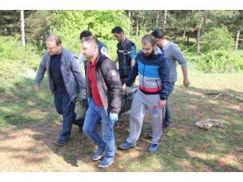 112 Acil Servis Görevlisi Not Bırakıp Ormanda Intihar Etti