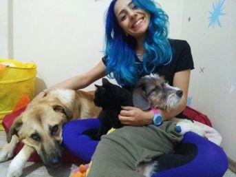 Üniversite Öğrencisi Evinde Felçli Ve Görme Engelli Kedi Köpek Besliyor