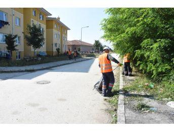 Düzce Belediyesi Çamköy Mahallesini Temizliyor