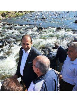 Bakan Yardımcısı Çiftci Balık Göçünü İzledi