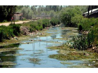 Derelere Atılan Çöpler Van Gölü'nü Kirletiyor