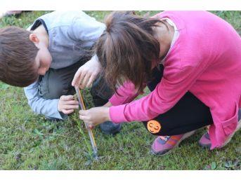 Çocuklar Salep Orkideleriyle Tanıştı