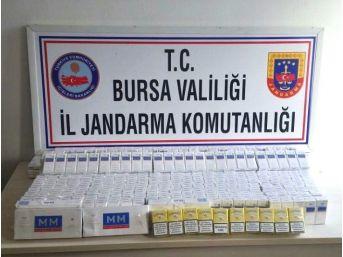 Bursa'da Jandarma Kaçak Sigaraya Geçit Vermedi