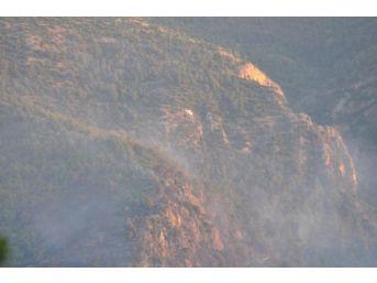 Denizli'de Orman Yangını (2)