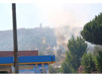 Ayasuluk Kalesi Yakınındaki Yangın Paniğe Yol Açtı