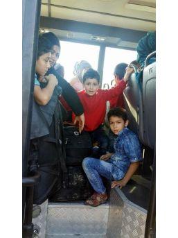 Dikili'de 86 Kaçak Yakalandı
