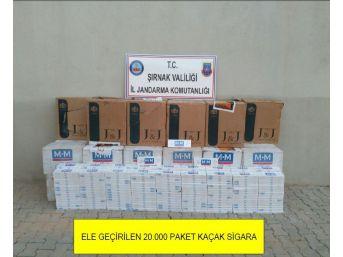 Şırnak'ta 20 Bin Paket Kaçak Sigara Ele Geçirildi