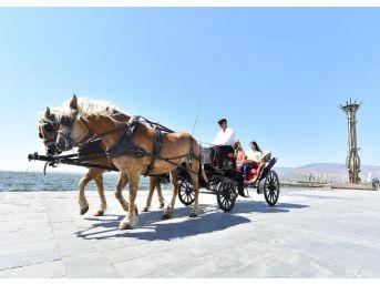 İzmir'de 'alo Fayton' Hizmeti Başladı