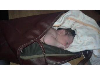Yeni Doğan Kız Bebeği Çanta Içinde Çöplerin Arasına Bıraktılar