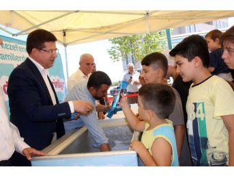 Camiye Giden Çocuklara Dondurma