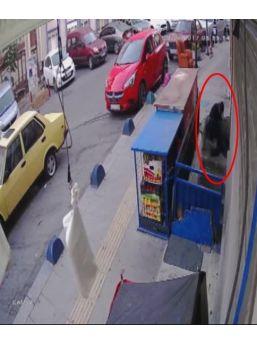 (özel Haber) Şişli'de 15 Dakikada 2 Evi Soyan Hırsızlar Kamerada