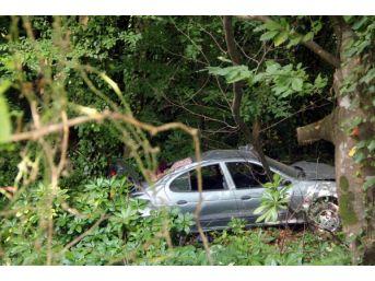 Ormanlık Alana Uçan Otomobilin Sürücüsü Yaralandı