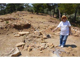 Nif Dağı'nda Kaçak Kazılar Önlenemiyor
