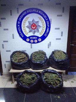 Siverek'te 25 Kilo Esrara 2 Gözaltı