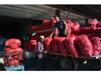 Adana'da Sezonun İlk Salçalık Biber Satışlarına Başlandı