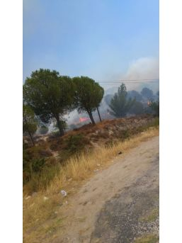 İzmir'de Piknik Alanı Yakınında Yangın
