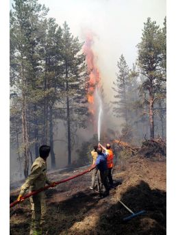 Ormandaki Yangının Söndürülmesi Için Halktan Yardım Istendi (2)