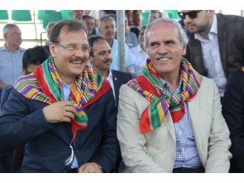 Başbakan Yardımcısı Çavuşoğlu: Biri Kılıçdaroğlu'na Cimcik Atsın (3)