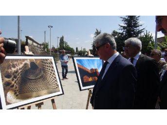 Fotoğraf Diliyle Anadolu'ya Giriş
