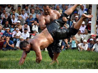 Tosya Güreşleri Kırkpınar'ı Aratmadı