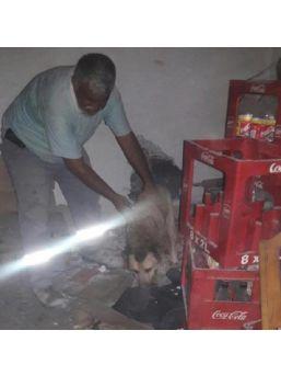Duvar Arasında Sıkışan Köpeği Itfaiye Kurtardı